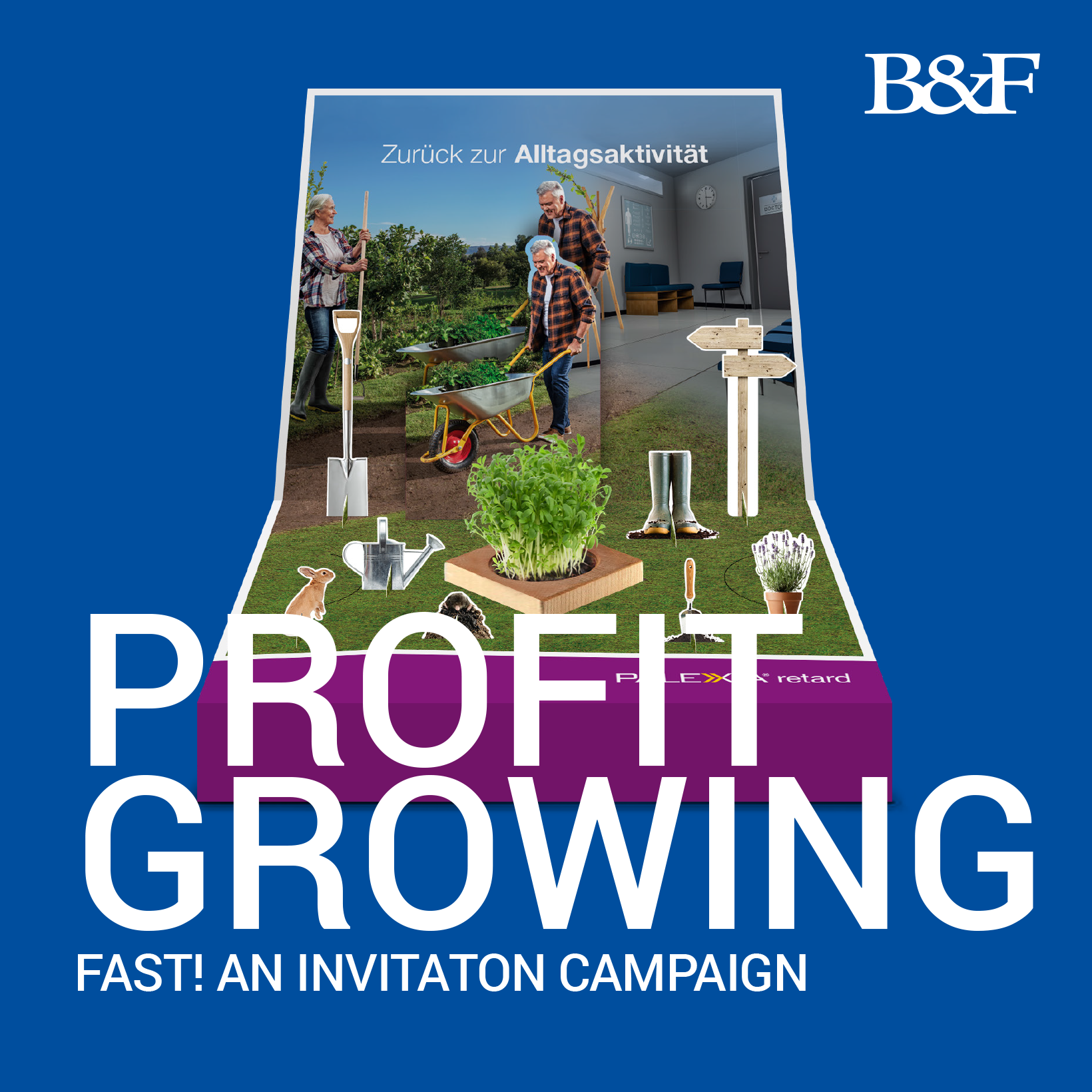 Profit growing fast campaign